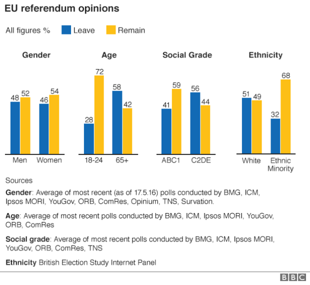 Eu referendum opinions